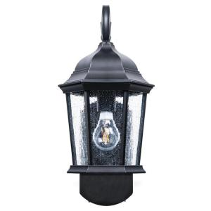 Coach Companion Smart Security Black Metal and Glass Outdoor Light Fixture