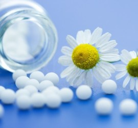 Homeopathic Medicine and Bellis-perennis daisies