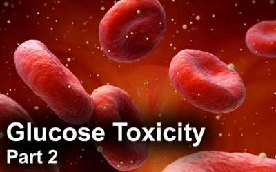 Glucose Toxicity – Part 2