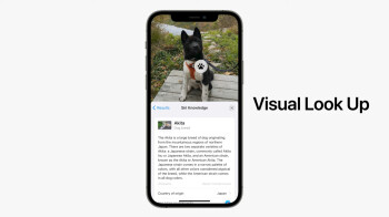 Apple's Visual Look Up is modeled after Google Lens 2