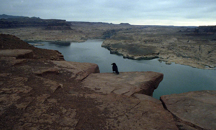 Lake Powell, Utah ---- January 1, 1997 ---- photo by Mark Weber