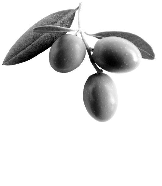 corning-olives-category