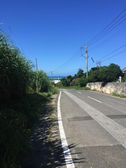 与論島田舎道