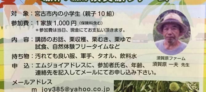親子秋の栗拾い会参加者募集中!