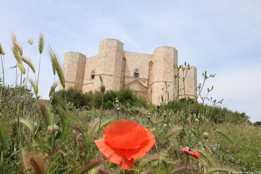 Blick auf Castel del Monte