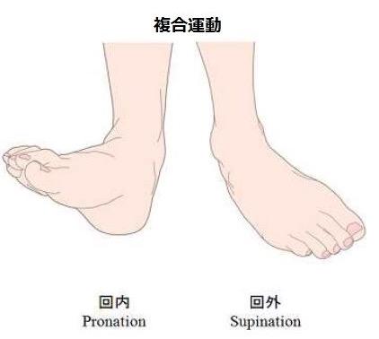 足部の複合運動