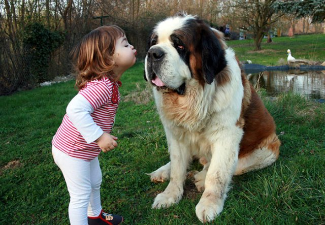 kids-with-dogs-68_700.jpg