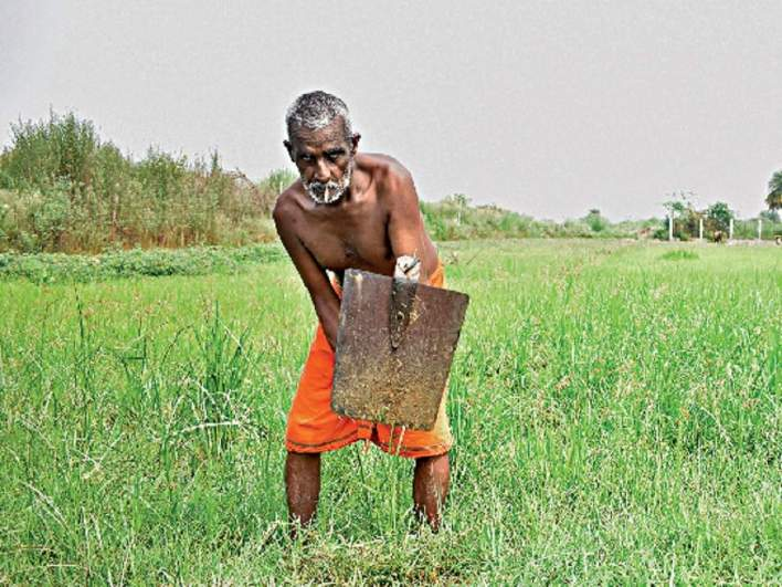 a rural resurgence will fuel india's economic recovery - the economic times