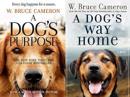 Download A Dogs Journey (2019) [HDCam-1xBet] Mp4 & 3GP