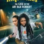 Download Hidden Orchard Mysteries: The Case of the Air B and B Robbery (2020) Mp4