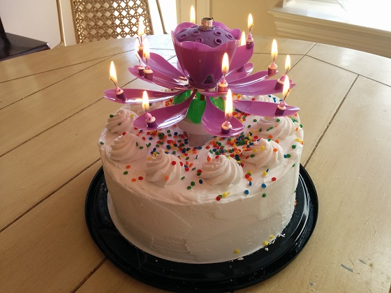 Lotus Candles Original Brand Beware Of Knock Offs And Imitations Musical Sparkling Flowering And Rotating Birthday Candles That Will Amaze Your Birthday Party Guests Mobile Website