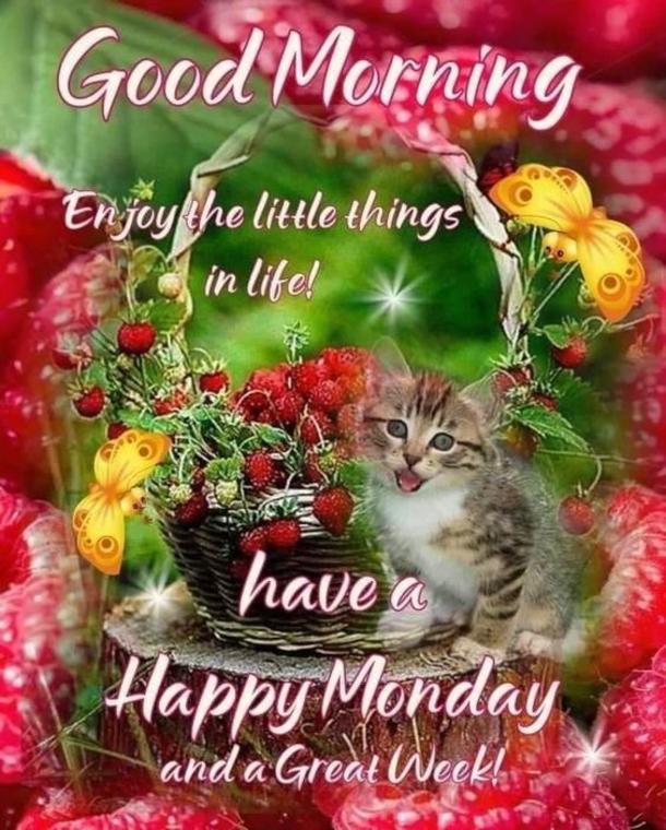 10 Happy Monday & Good Morning Monday Quotes