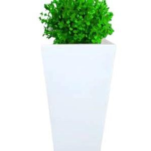 MKS Kitchen Beautiful Square Eco-Friendly Polyethylene Decorative Leafy and Flowering Pot/Planter/Gamla Indoor Outdoor Home/Balcony/Office/Living Room (ABP-15)