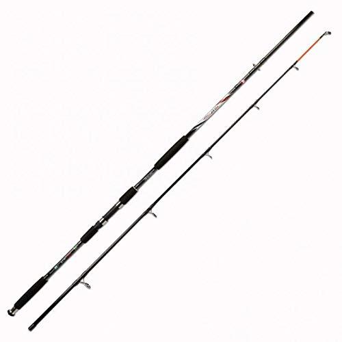 Lineaeffe Carbon Catfish 350 3 m up to 350 g Canna da Pesca per Siluro Storione Pesce Gatti Potente e Precisa nella Ferrata