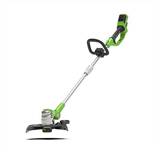 Greenworks Tools 2100007 Tagliabordi, 24 V, Verde