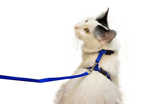 Juvale Adjustable Nylon Pet Harness Collar and Leash for Cats and Small Dogs, Navy Blue