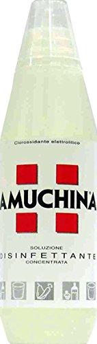AMUCHINA Disinfettante Concentrato Liquido 1000 Ml