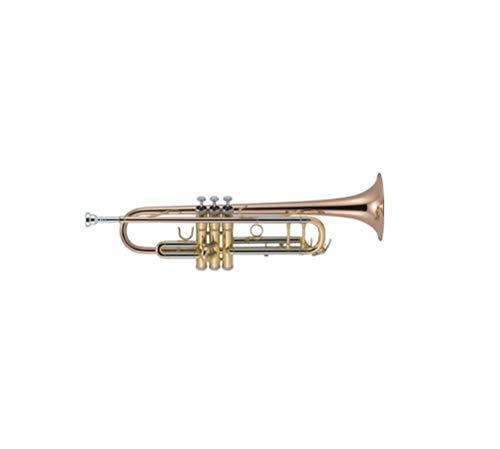 J. Michael TR450 - Trompeta en SI bemol, lacada