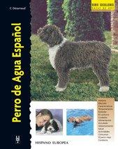 Perro de Agua Español (Excellence)