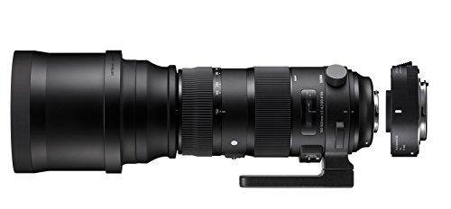 SIGMA ZA955 - Objetivo SIGMA 150-600mm F5-6.3 Sport +TELE CONVER.TC-1401 para Nikon, color negro