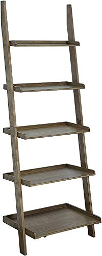 6. Convenience Concepts Bookshelf Ladder