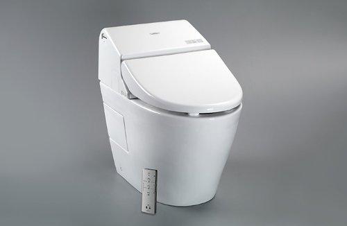 Toto Dual Flush G500