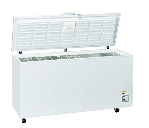 CF 608 - Congelatore a pozzetto