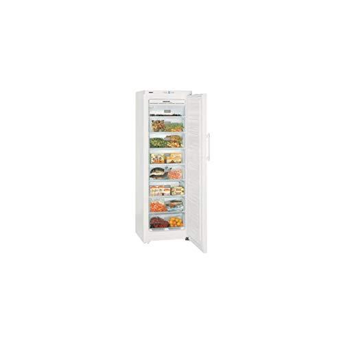 Liebherr GNP3013-22 congelatore Libera installazione Verticale Bianco 257 L A++