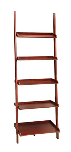 3. Convenience Concepts Bookshelf Ladder