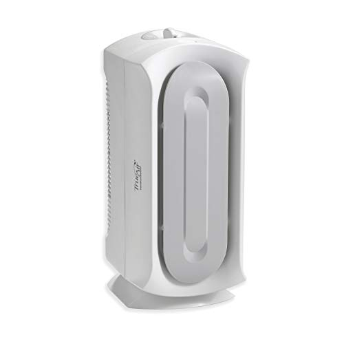 Hamilton Beach TrueAir Air Purifier with Permanent HEPA Filter for Home or Office and for Allergies and Pets, Whisper Quiet, 3 Filtration Stages, 140 sq ft, White with Grey