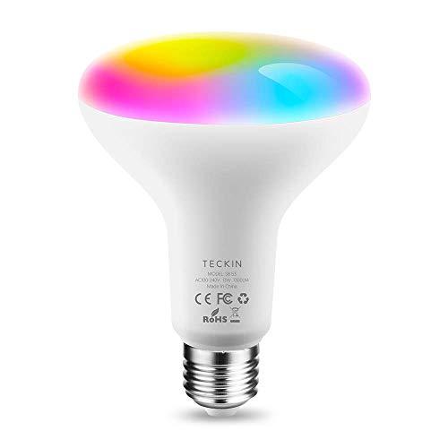Lampadina Alexa LED E27 13W RGB Multicolor Dimmerabile Equivalente 100W,Compatibile con Alexa,Google Assistant,Smart Life,TECKIN BR30 Domotica con timing(Non supporta 5G WiFi)