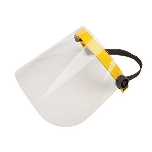 Face Shield with Flip-up Visor (Set of 2)