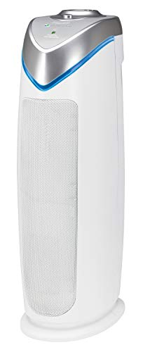 31quxdgJGyL - 10 Best Air Purifier Reviews & Buyer's Guide 2021