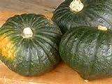 北海道産かぼちゃ 味平 10kg