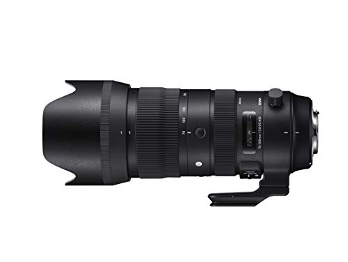 SIGMA 70-200mm F2.8 DG OS HSM | Sports S018 | Canon EFマウント | Full-Size/Large-Format