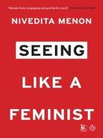 Seeing Like a Feminist by [Nivedita Menon]