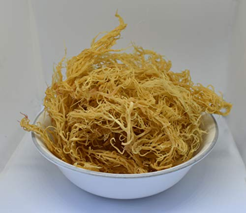 Wildcrafted Irish Moss/Sea Moss - 100% Natural, Raw, Vegan, Now Imported from St. Lucia - Salt Free, Sand Free and Completely Dry - (8oz)