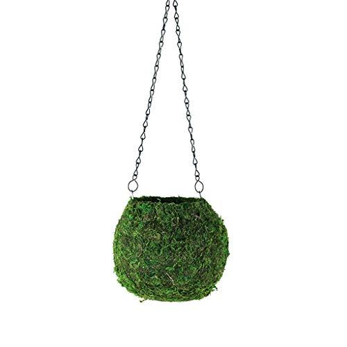 Floral Supply Online - Kokedama Planter for Japanese Gardening. 6'...