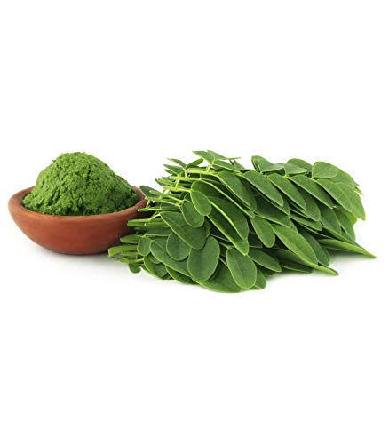 Organic Moringa Oleifera Leaf Powder - 5 lb - 100% Pure, Raw, Non GMO, Vegan & Kosher - Amazing in Smoothies, Drinks, Tea, Juice & Recipes - Energizing Green Superfood Packed with Vitamins & Minerals 1
