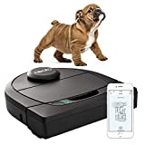 Neato Robotics D450, Cleaner Pack, Corner Cleaning Robot Vacuum with D-Shape + Exclusive Pet Accessories for Carpet and Hard Floors, App/Alexa Compatible, Black