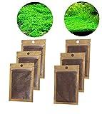 Suministros para acuarios semillas de plantas acuticas semillas de plantas suministros para acuarios mini semillas 6 bolsas sper fciles de cultivar 2 especies