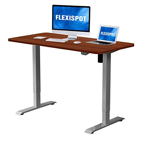 Flexispot Electric Height Adjustable Desk Sit Stand Desk, 42 x 24 Inches, Home Office Table Stand up Desk (Gray Frame + 42 in Mahogany Top)