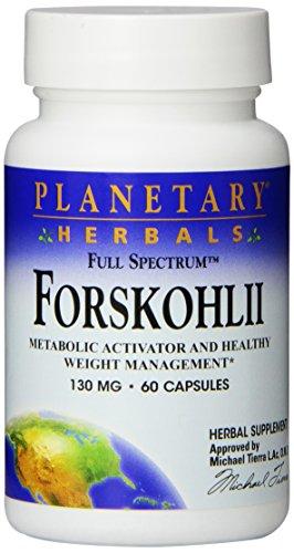 Planetary Herbals Forskolin (Forskohlii) - Volles Spektrum - 130 mg - 60 Kapseln, PF0603