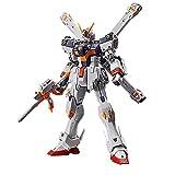 Bandai Real Grade RG 1/144 Mobile Suit Gundam Crossbone X1