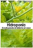 Hidropona: Construyendo mi sistema en casa