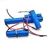 3000mAh pour aspirateur Electrolux 18V Batterie Li-ion ZB2941 ZB2904X ZB2942...
