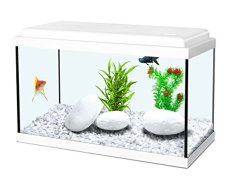 Acquario nanolife 40x20x25h 18 litri