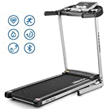 HONRISE 2.5HP Folding Treadmill for Home Gym Walking Jogging Running, Quick Speed Buttons, Indoor Electric Running Machine with LCD Monitor and Pulse Sensor