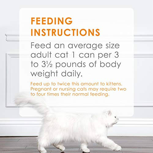 Cat | Fancy Feast Wet Cat Food Variety Pack, Poultry & Beef Classic Pate Collection, (24) 3 Oz Cans, Gym exercise ab workouts - shap2.com