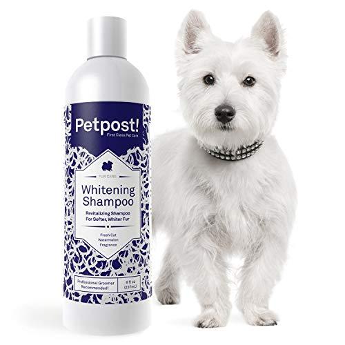 Petpost | Dog Whitening Shampoo - Best Lightening...